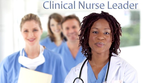 examining the role of the clinical nurse A nurse manager is the nursing organizational mastermind for a health-care unit in a hospital or clinical setting supervising all nurses working in the unit, a nurse manager hires, trains and evaluates nurses to ensure patient care is running smoothly.